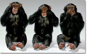 deafdumbblind monkeys