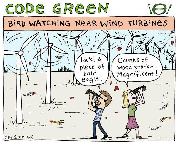 birds turbines